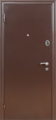 Дверь Феникс металл