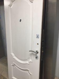 входная дверь в химках