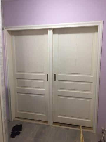 Подвесные раздвижные двери Версаль 40005 ясень жемчуг